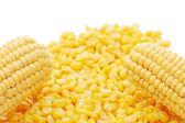 Espiga de milho e milho em conserva — Foto Stock