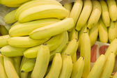 Sheaf of bananas in a supermarket — Stock Photo