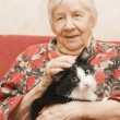 The grandmother with a cat on a sofa — Stock Photo #2470906
