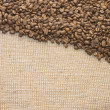 Brown coffee grains on a sacking — Stock Photo
