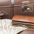 Money lays on old suitcase — Stock Photo #2490377