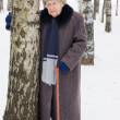 Portrait of the old woman in the winter — Stock Photo