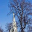 The old church of the city of Yaroslavl — Stock fotografie