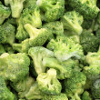 Green broccoli background — Stock Photo