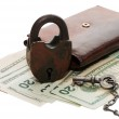 Money and the lock isolated on white — Stock Photo