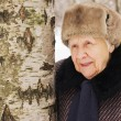 Portrait of the old woman in the winter — Stockfoto