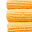 Three ears of fresh corn — Stock Photo #2586963