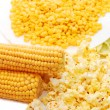 Fresh corn, preserved corn and popcorn - Photo