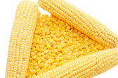 Ear of fresh corn and tinned corn — Foto Stock