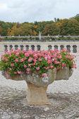 Blommor i en vas i park chenonceau — Stockfoto