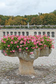 Flowers in a vase in park Chenonceau — Stock Photo