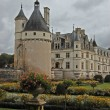 Chateau and Garden Chenonceau - Stock Photo