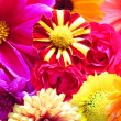 Beautiful background from perfect fresh flowers - Stock Photo