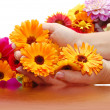 Female hand with beautiful flowers — Stock Photo #2605507