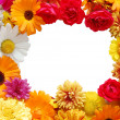 Framework from flowers - Stock Photo