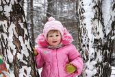 Retrato de invierno de la niña de la rosa — Foto de Stock