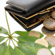 Green leaves with coins and a purse — Stock Photo
