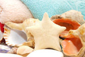 Starfish and seashells on towel background — Stock Photo