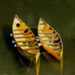 Canoes — Stock Photo