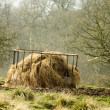 Haystack — Stock Photo #2516103