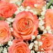 Bouquet of roses — Stock Photo #1360355