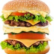 Hamburger — Stock Photo #1388871
