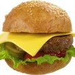 Hamburger — Stock Photo #1388909