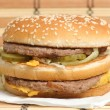 Hamburger — Stock Photo #1495828