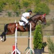 Rider in jumping show — Stock Photo #1313681