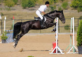 Rider in the jumping show — ストック写真