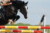 Rider on the raven horse — Stock Photo