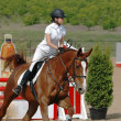 Rider on red horse in the jumping show - Foto Stock