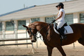 Rider on red horse in the jumping show — Stock Photo