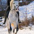 Girl on white dressage horse in winter — Stock Photo #2202272