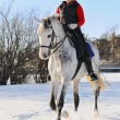 Girl on white dressage horse in winter f — Stock Photo #2202405