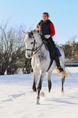 Girl on white dressage horse in winter f — Stock Photo