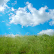 Green grassland and clouds - Stock Photo