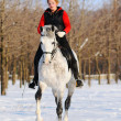 Girl on white dressage horse in winter — Stock Photo #2531102
