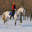Girl on white dressage horse in winter — Stock Photo #2531128
