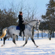 Girl on white dressage horse in winter — Stock Photo #2531232