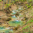 Small river in the mountain in spring — Stock Photo
