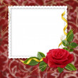 White frame with rose and ribbons on — Stockfoto #1311872