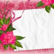 Card with rose on the pink background — Stock Photo