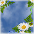 Stock Photo: Card with the flowers on the blue backgr