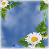Card with the flowers on the blue backgr — Foto Stock