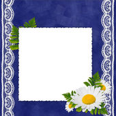 Frame with flowers on the blue backgr — Zdjęcie stockowe