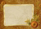 从旧纸张和花卉复古卡 — 图库照片