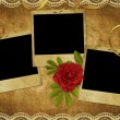 Vintage card from old paper and rose — Stockfoto #1446243