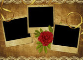 Vintage karta z księgi starego i róża — Zdjęcie stockowe