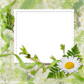 White frame with ribbon and flower — Stock Photo